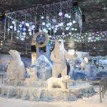 Inauguração do Snow Park no Shopping Paris atrai mais de 20 mil pessoas